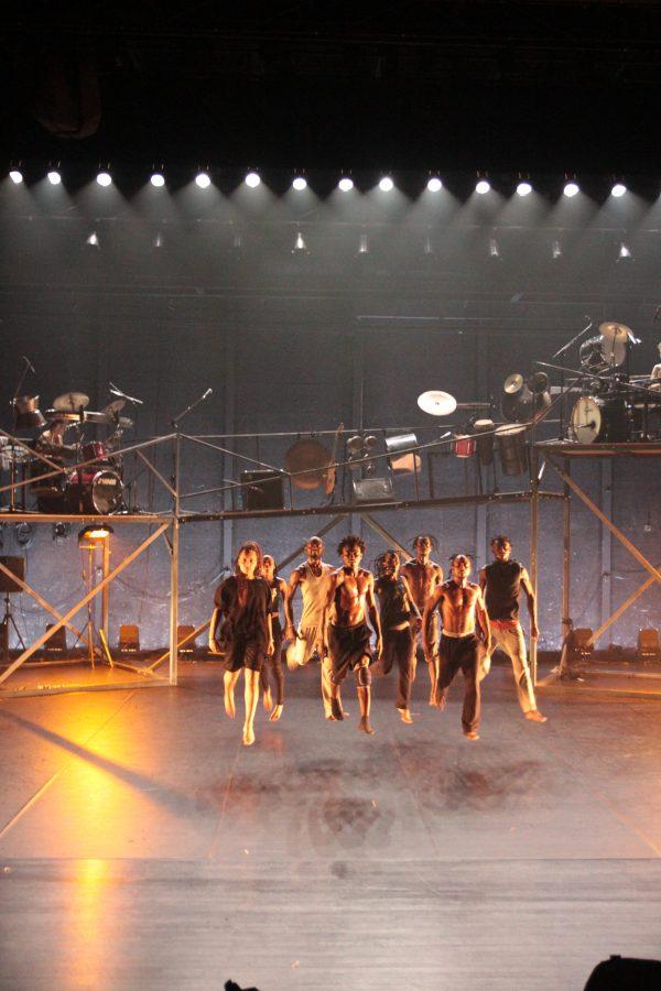 Vivat la danse ! 22ème édition : terre !